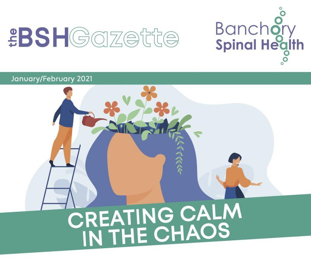 BSH-janfeb-newsletter